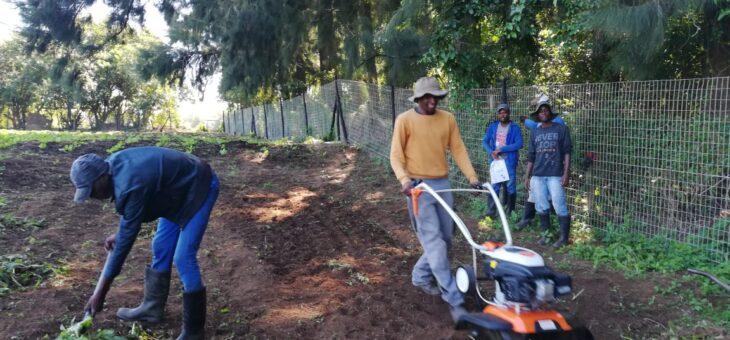 Neuigkeiten aus den landwirtschaftlichen Projekten
